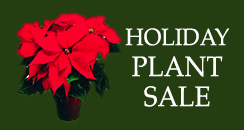 Holiday Plant Sale 2015