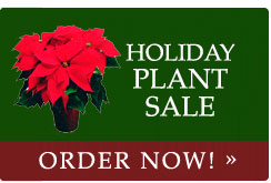 Holiday Plant Sale 2014